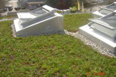 Gepflegte Flachdächer...möglich mit dem Wartungsvertrag von Maillard Bedachungen AG.