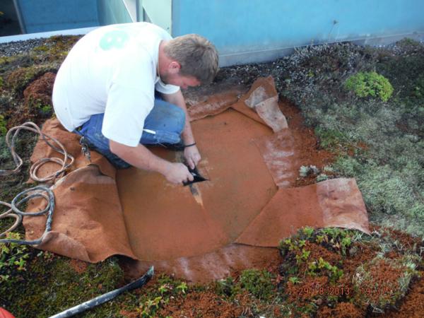 Ob für die Dachpflege oder für Reparaturarbeiten; wir bieten für jedes Dach die richtige Lösung.
