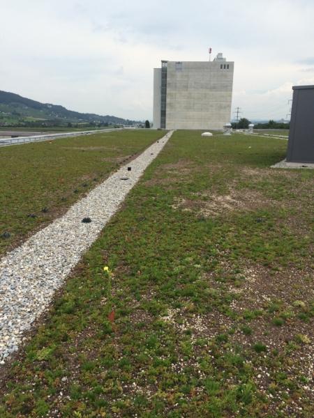 Projekte und Referenzobjekte von Maillard-Bedachungen