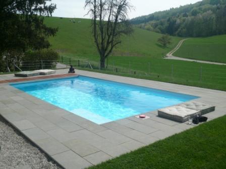 Swimmingpool in Langwiesen