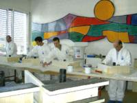Das Flüssigkunststoff-Team beim Anwenderkurs mit Einsatz von neuen Materialien.
